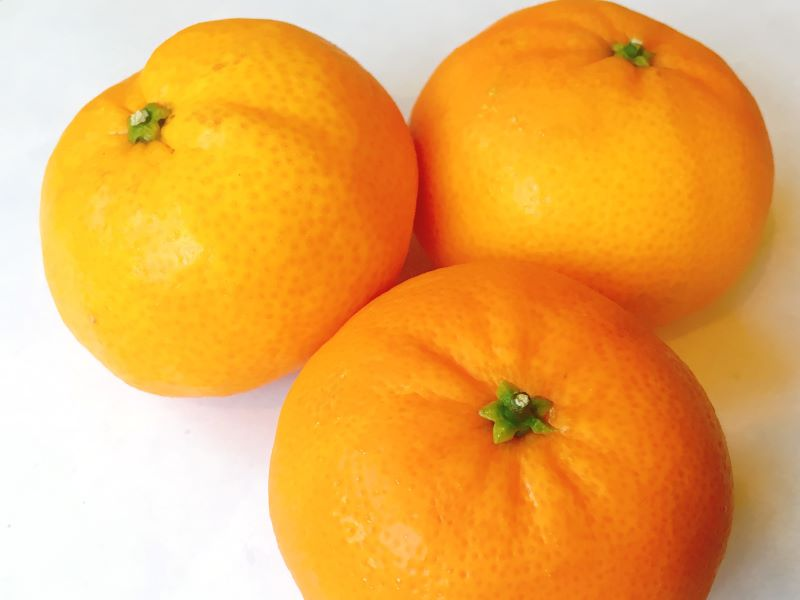 Citrus fruit is a low calorie treat as part of a healthy diet
