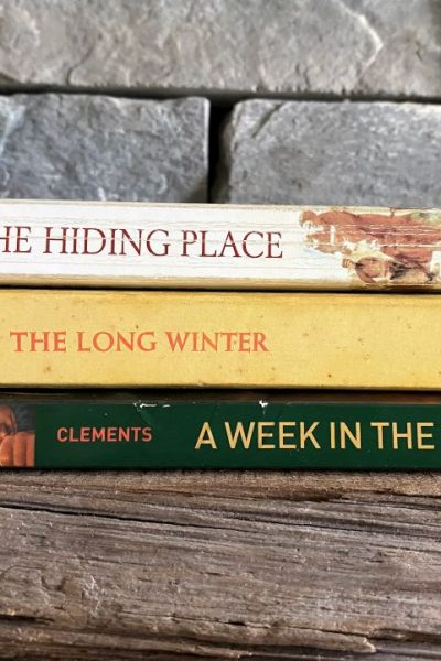 stack of kids and teen books on wooden shelf