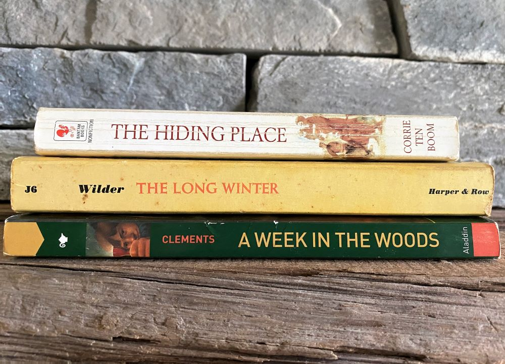 Stack of best books for teens sitting on a fireplace mantel with stone background.
